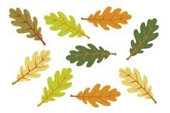 ζωηρόχρωμα φύλλα φθινοπώρ&omicr απεικόνιση αποθεμάτων