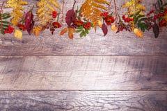 Ζωηρόχρωμα φύλλα και λουλούδια φθινοπώρου στο ξύλινο υπόβαθρο Στοκ εικόνες με δικαίωμα ελεύθερης χρήσης
