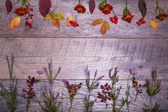 Ζωηρόχρωμα φύλλα και λουλούδια φθινοπώρου στο ξύλινο υπόβαθρο Στοκ Φωτογραφίες