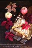 Ζωηρόχρωμα φύλλα πιτών και φθινοπώρου της Apple Στοκ Εικόνες