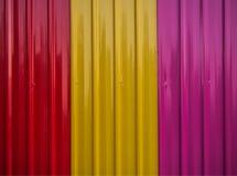 Ζωηρόχρωμα φύλλα ψευδάργυρου Στοκ φωτογραφία με δικαίωμα ελεύθερης χρήσης