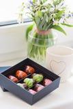 Ζωηρόχρωμα χειροποίητα bonbons σοκολάτας πολυτέλειας στο κιβώτιο Στοκ Εικόνα