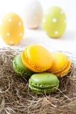 Ζωηρόχρωμα macaroons και αυγά Πάσχας Στοκ Φωτογραφίες
