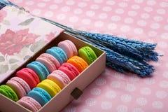 Ζωηρόχρωμα macaroons στο ρόδινο υπόβαθρο Γλυκά macarons στο κιβώτιο δώρων Στοκ Εικόνα