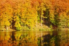 Ζωηρόχρωμες δάσος και λίμνη φθινοπώρου στοκ φωτογραφία με δικαίωμα ελεύθερης χρήσης