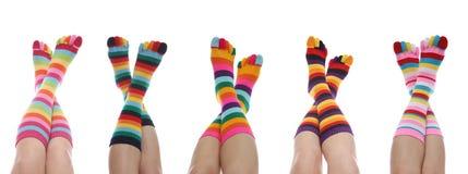 ζωηρόχρωμες κάλτσες Στοκ Φωτογραφίες
