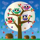 Ζωηρόχρωμες κουκουβάγιες ενός δέντρων πλήρεις ow απεικόνιση αποθεμάτων