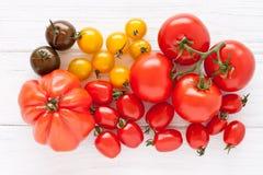 ζωηρόχρωμες ντομάτες Στοκ φωτογραφία με δικαίωμα ελεύθερης χρήσης