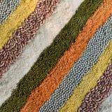 ζωηρόχρωμες ξηρές σειρές μπιζελιών οσπρίων φασολιών ριγωτές Στοκ Εικόνες