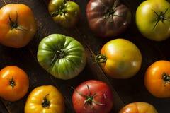 Ζωηρόχρωμες οργανικές ντομάτες οικογενειακών κειμηλίων Στοκ φωτογραφία με δικαίωμα ελεύθερης χρήσης