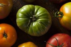Ζωηρόχρωμες οργανικές ντομάτες οικογενειακών κειμηλίων Στοκ Εικόνες