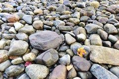 Ζωηρόχρωμες πέτρες, Κάμντεν, Μαίην, ΗΠΑ Στοκ εικόνες με δικαίωμα ελεύθερης χρήσης