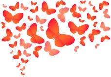 Ζωηρόχρωμες πεταλούδες στο λευκό Ελεύθερη απεικόνιση δικαιώματος