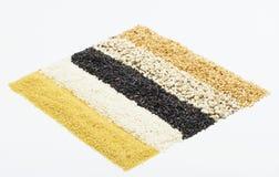 Ζωηρόχρωμες ριγωτές σειρές των ρυζιών Στοκ Φωτογραφία