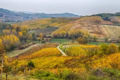 Ζωηρόχρωμες σειρές του αμπελώνα στην αμπελοκαλλιέργεια το φθινόπωρο στην Ιταλία Στοκ φωτογραφίες με δικαίωμα ελεύθερης χρήσης