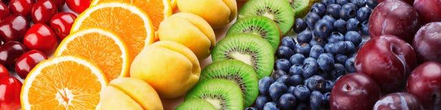 Ζωηρόχρωμες σειρές φρούτων Στοκ εικόνες με δικαίωμα ελεύθερης χρήσης