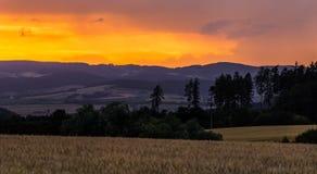 Ζωηρόχρωμες σκιαγραφίες ηλιοβασιλέματος και δέντρων Στοκ φωτογραφία με δικαίωμα ελεύθερης χρήσης