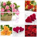 Ζωηρόχρωμες τριαντάφυλλα και καρδιές Στοκ εικόνα με δικαίωμα ελεύθερης χρήσης