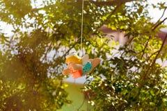 Ζωηρόχρωμη ένωση κουκλών αγγέλου κεραμική στον κήπο Στοκ Φωτογραφία