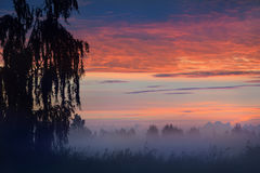 Ζωηρόχρωμη ανατολή στον τομέα Στοκ φωτογραφία με δικαίωμα ελεύθερης χρήσης