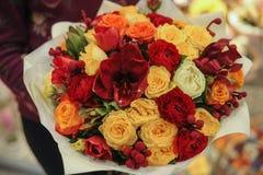 Ζωηρόχρωμη ανθοδέσμη με τα τριαντάφυλλα convolvulus σύνθεσης ανασκόπησης λευκό τουλιπών λουλουδιών στοκ φωτογραφία με δικαίωμα ελεύθερης χρήσης