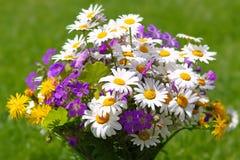 Ζωηρόχρωμη ανθοδέσμη wildflowers. Στοκ φωτογραφία με δικαίωμα ελεύθερης χρήσης