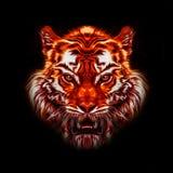 Ζωηρόχρωμη απεικόνιση της τίγρης Στοκ φωτογραφία με δικαίωμα ελεύθερης χρήσης