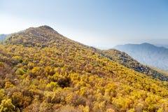 Ζωηρόχρωμη βουνοπλαγιά Baihua Mountainï ¼ Œ Πεκίνο στοκ εικόνες με δικαίωμα ελεύθερης χρήσης