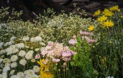 ζωηρόχρωμη διακόσμηση λουλουδιών στην αγορά λουλουδιών Στοκ εικόνα με δικαίωμα ελεύθερης χρήσης