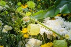ζωηρόχρωμη διακόσμηση λουλουδιών στην αγορά λουλουδιών Στοκ Εικόνες