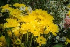 ζωηρόχρωμη διακόσμηση λουλουδιών στην αγορά λουλουδιών Στοκ Φωτογραφίες