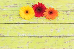 Ζωηρόχρωμη διακόσμηση συνόρων λουλουδιών στο αγροτικό ξύλινο υπόβαθρο Στοκ φωτογραφία με δικαίωμα ελεύθερης χρήσης