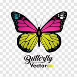 Ζωηρόχρωμη διανυσματική συλλογή απεικόνισης πεταλούδων διανυσματική απεικόνιση