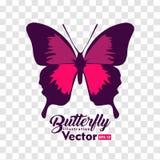 Ζωηρόχρωμη διανυσματική συλλογή απεικόνισης πεταλούδων ελεύθερη απεικόνιση δικαιώματος