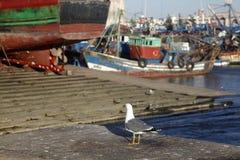 ζωηρόχρωμη ημέρα εμπορευματοκιβωτίων πολύς λιμένας ηλιόλουστος Στοκ Εικόνα