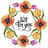 Ζωηρόχρωμη θερινή τουλίπα Floral βοτανικό λουλούδι Τετράγωνο διακοσμήσεων συνόρων πλαισίων Στοκ Εικόνα