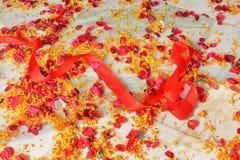 ζωηρόχρωμη κορδέλλα Στοκ Φωτογραφία