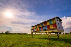 Ζωηρόχρωμη κυψέλη μελισσών στον πράσινο χλοώδη τομέα το καλοκαίρι Στοκ εικόνες με δικαίωμα ελεύθερης χρήσης