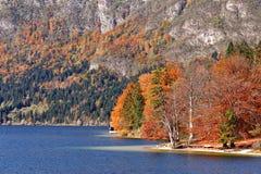 Ζωηρόχρωμη λίμνη φθινοπώρου πίσω από το δάσος και τα βουνά Στοκ φωτογραφίες με δικαίωμα ελεύθερης χρήσης