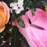 Ζωηρόχρωμη λεπτομέρεια ανθοδεσμών λουλουδιών Στοκ εικόνα με δικαίωμα ελεύθερης χρήσης