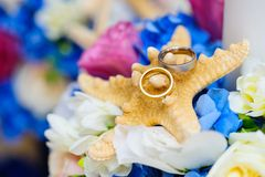 Ζωηρόχρωμη ρύθμιση για τα γαμήλια δαχτυλίδια Στοκ φωτογραφίες με δικαίωμα ελεύθερης χρήσης