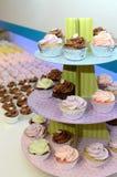 Ζωηρόχρωμη σειρά Cupcakes Στοκ Εικόνες