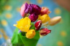 ζωηρόχρωμη τουλίπα ανθοδ& Στοκ Εικόνα