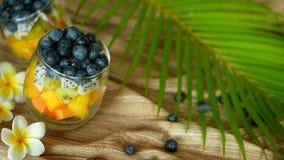 Ζωηρόχρωμη τροπική σαλάτα μιγμάτων στο βάζο Φρέσκο διάφορο είδος ακατέργαστων οργανικών μούρου και φρούτων στο κύπελλο γυαλιού Υγ φιλμ μικρού μήκους