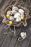 ζωηρόχρωμη λυγαριά αυγών Πά& Στοκ Φωτογραφίες