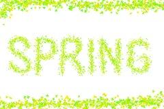 Ζωηρόχρωμη υποβάθρου φρέσκια άνοιξη φωτεινή επιγραφής κιτρινοπράσινη κάρτα ιδρύματος σχεδίου εικόνας φύλλων σφενδάμου μίνι απεικόνιση αποθεμάτων