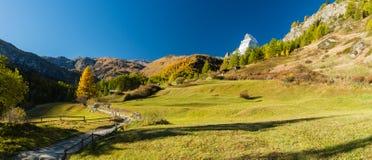 Ζωηρόχρωμη φύση φθινοπώρου κάτω από το Matterhorn Στοκ Φωτογραφίες