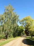Ζωηρόχρωμοι δέντρα και δρόμος φθινοπώρου Στοκ Εικόνα