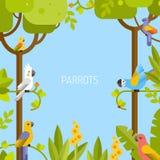 Ζωηρόχρωμοι παπαγάλοι υποβάθρου ζουγκλών Απεικόνιση αποθεμάτων