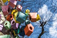 Ζωηρόχρωμοι τροφοδότες πουλιών που κλείνουν το τηλέφωνο στο δέντρο κοντά Στοκ φωτογραφία με δικαίωμα ελεύθερης χρήσης